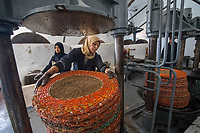 Women work the olive oil press at the Fermes Ali Sfar olive oil mill in Zaghouan, Tunisia. Kadouja Sghir took over the innovative oil mill with her son Mohamed after the death of her husband.