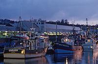 Europe/France/Bretagne/29/Finistère/Concarneau: Le port de nuit