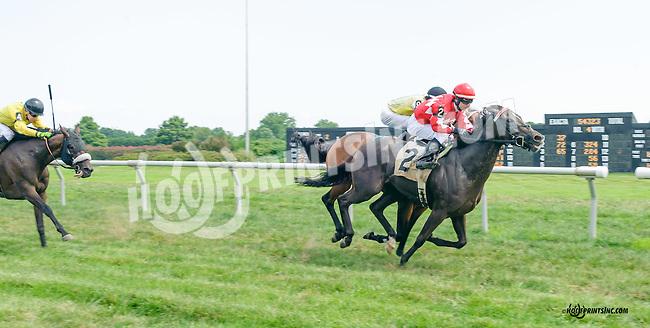 Penry winning at Delaware Park on 8/18/15