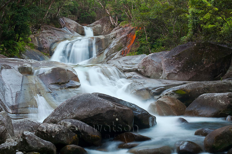 Josephine Falls - a popular freshwater swimming hole in Wooroonoonan National Park.  Innisfail, Queensland, Australia