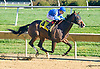 Harbor Breeze winning at Delaware Park on 10/8/15