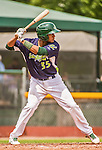 8 July 2014: Vermont Lake Monsters catcher Andy Paz in action against the Lowell Spinners at Centennial Field in Burlington, Vermont. The Lake Monsters rallied with two runs in the 9th to defeat the Spinners 5-4 in NY Penn League action. Mandatory Credit: Ed Wolfstein Photo *** RAW Image File Available ****