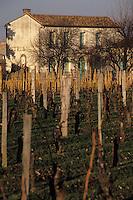 Europe/France/Aquitaine/33/Gironde/Pomerol: Le château Petrus et son vignoble