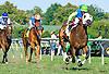 Not Mizzen A Beat winning at Delaware Park on 9/5/16