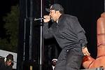 Ice Cube 2015