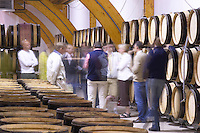 barrel aging cellar people delas freres tournon-s-r rhone france
