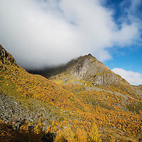 Colorful autumn mountain landscape, Vestvågøya, Lofoten Islands, Norway