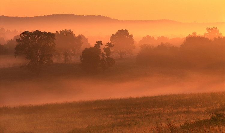 Foggy sunrise color near the Mississippi River; Jersey County, IL