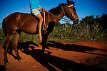A farmer on his horse in the countryside of Vinales, Cuba, on Sunday, April 21, 2008.