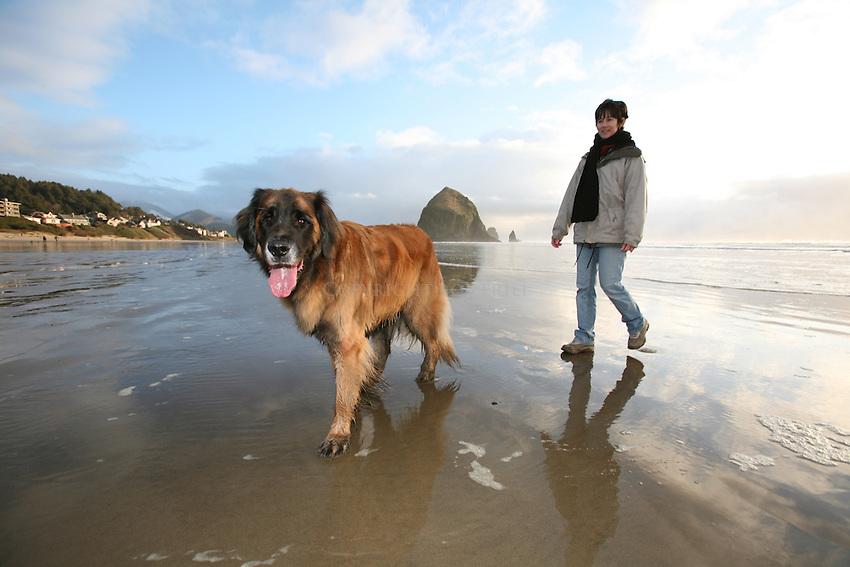 Scenes from Dog Friendly Cannon Beach, Oregon