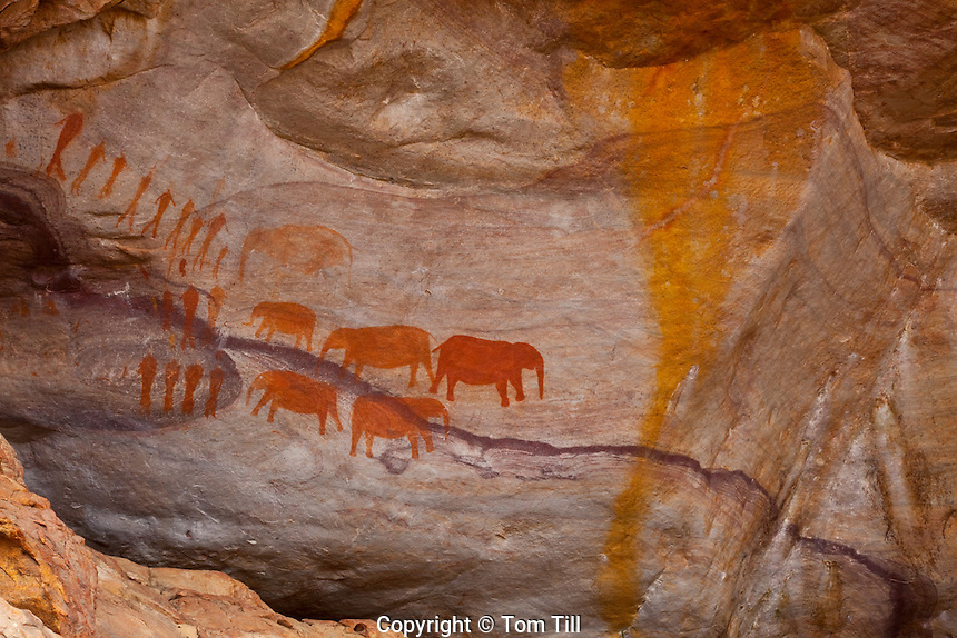 San rock art     Matjiesriver Nature Reserve, South Africa   Ancient rock art by vanished people 800-2,000 years old  Northern Cape Area