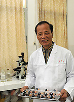 Proff, Chen Xigu, a pioneer in Chinese cloning poses in his lab in Guanzhou, China.<br />
