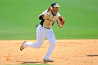 22 April 2012:  FIU shortstop Julius Gaines (2) pursues a runner caught in a run-down as the University of Arkansas Little Rock Trojans defeated the FIU Golden Panthers, 7-6, at University Park Stadium in Miami, Florida.