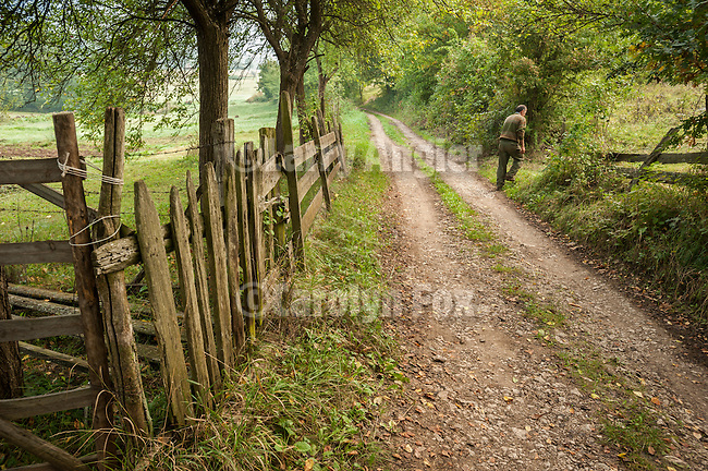 A man walks a fence lined country road with trees, Mokra Gora, Serbia