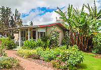 The Proteas of Hawaii gift shop near the Kula Lodge in Upcountry Maui.