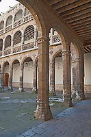 Colegio de Santa Cruz college Valladolid spain castile and leon