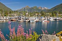 Trolling vessel Lanus, Crescent Harbor, Sitka, Baranof Island, southeast, Alaska.