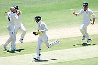 29th December 2019; Melbourne Cricket Ground, Melbourne, Victoria, Australia; International Test Cricket, Australia versus New Zealand, Test 2, Day 4; Tim Paine of Australia celebrates stumping Henry Nicholls of New Zealand for 33 runs - Editorial Use