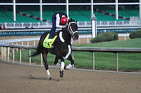 May 1, 2014: Ride on Curlin gallops in preparation for the Kentucky Derby at Churchill Downs in Louisville, KY. Zoe Metz/ESW/CSM