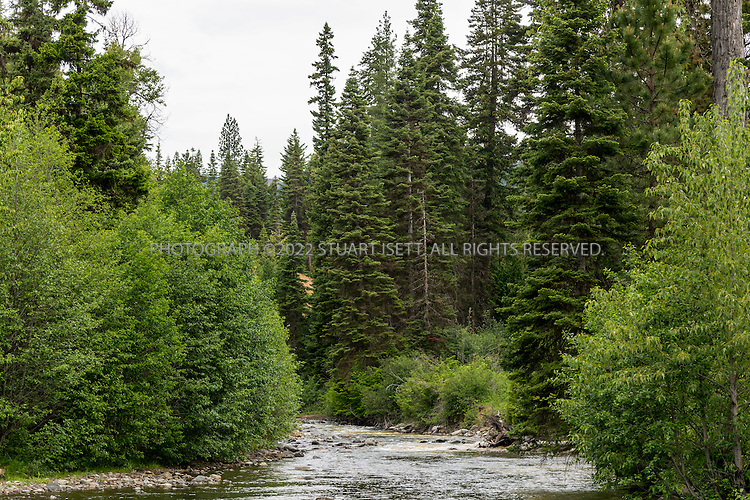 5/31/2015&mdash;Cle Elum, Washington, USA<br /> <br /> <br /> The Twentynine Pines Campground next to the North Fork Teanaway River, on Teanaway Road North Fork in Cle Elum, Washington. <br /> <br /> A Kittitas County sheriff&rsquo;s deputy, called to the camp following reports of unattended children there, described a feeling that there was &ldquo;some kind of cult activity&rdquo; going on at Melford Warren Jr.&rsquo;s&nbsp;campsite, which was near the North Fork Teanaway River (SEEN HERE) which runs next to the camp. Now, investigators claim Warren, 43, was nearby when deputies arrived on Sept. 15, raping one of his 12&nbsp;children.<br /> <br /> Melford Warren Jr., 43, lived with his two lovers, Shannon Felicia Ann Smith, 41, and Amanjot Kaur Jaswal, 28 in Port Orchard, Washington. Warren has been charged with child rape and related crimes on allegations stemming from his family&rsquo;s stay at this Port Orchard home.<br /> <br /> Photograph by Stuart Isett<br /> &copy;2015 Stuart Isett. All rights reserved.