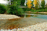The North Fork of the Coeur D Alene River where it flows into the Coeur D Alene River, in North Idaho