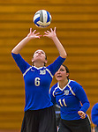 1 November 2015: Yeshiva University Maccabee Setter and Defensive Specialist Yael Ghelman, a Sophomore from Houston, TX, sets against the SUNY College at Old Westbury Panthers at SUNY Old Westbury in Old Westbury, NY. The Panthers edged out the Maccabees 3-2 in NCAA women's volleyball, Skyline Conference play. Mandatory Credit: Ed Wolfstein Photo *** RAW (NEF) Image File Available ***