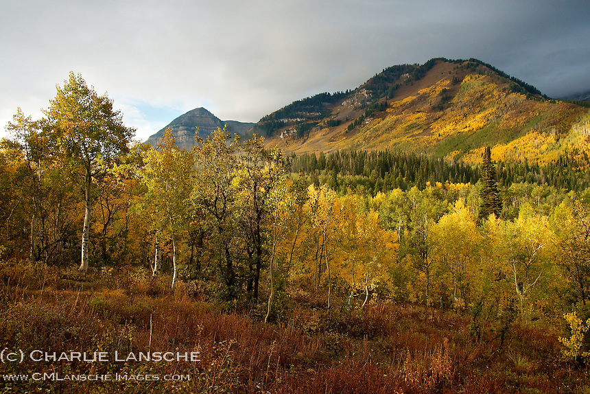 Late September brings vibrant color and cool weather to Utah's high country.