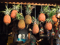 COSTA RICA , File Photo  Jan 31 2001<br /> Pineapples hang from a cord in front of  an open market beside the road between Manuel-Antonio and San Jose in Costa Rica..