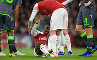 Henrikh Mkhitaryan of Arsenal tried to help Injured Danny Welbeck to his feet during the UEFA Europa League group match between Arsenal and Sporting Clube de Portugal at the Emirates Stadium, London, England on 8 November 2018. Photo by Andrew Aleks / PRiME Media Images.<br /> .<br /> (Photograph May Only Be Used For Newspaper And/Or Magazine Editorial Purposes. www.football-dataco.com)