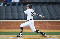 Michael Ludowig (22) of the Wake Forest Demon Deacons follows through on his swing against the Sacred Heart Pioneers at David F. Couch Ballpark on February 15, 2019 in  Winston-Salem, North Carolina.  The Demon Deacons defeated the Pioneers 14-1. (Brian Westerholt/Four Seam Images)