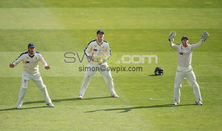 Picture by Allan McKenzie/SWpix.com - 26/04/2015 - Cricket - LV County Championship Div One - Yorkshire County Cricket Club v Warwickshire County Cricket Club - Headingley Cricket Ground, Leeds, England - Yorkshire's Jack Leaning, Alex Lees & Andrew Hodd react to a good delivery.