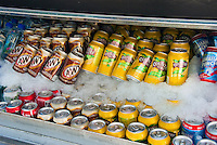 Assorted, Canned, Sodas, on Ice, Gourmet Food Truck, A&W Root Beer, Country Time, LemonAid