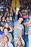 Audience members cheer as wrestlers make their entrance during a WWE Live Summerslam Heatwave Tour event at the MassMutual Center in Springfield, Massachusetts, USA, on Mon., Aug. 14, 2017.