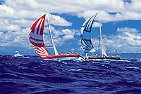 Sailboat race off Oahu's coastline