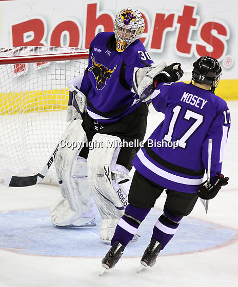 Minnesota State University-Mankato goalie Phil Cook and Evan Mosey celebrate the Maverick's second period goal. (Photo by Michelle Bishop)