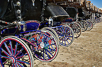 Colorful horse drawn carriages lined up at Temple of Horus at Edfu, Egypt.