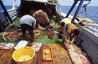 - train fishing to the wide of the sicilian southern coast....- pesca a strascico al largo della costa meridionale siciliana