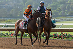 DEL MAR, CA  AUGUST 4: #11 Cambodia, ridden by Drayden Van Dyke, in the post parade before the Yellow Ribbon Handicap (Grade ll) on August 4, 2018 at Del Mar Thoroughbred Club in Del Mar, CA.(Photo by Casey Phillips/Eclipse Sportswire/ Getty Images)