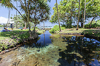 Families relax near an algae-strewn pond at Richardson Beach Park, Hilo, Big Island.