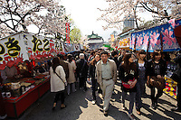 Stalls and cherry blossom, Ueno Park, Tokyo, Japan, April 3, 2010.