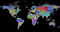 Incredible world map of all the rivers.