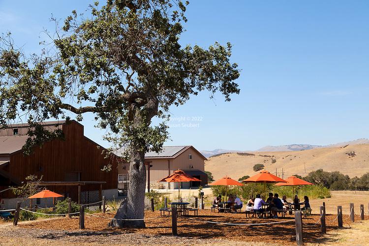 Foxen Vineyard in Santa Maria, California. The new, solar powered tasting room.