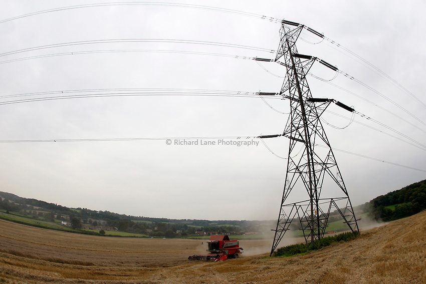 Photo: Richard Lane/Richard Lane Photography. Grain harvest near Little Missenden, Buckinghamshire. A Massey Ferguson combine harvester cutting winter wheat under power lines and pylons. 16/09/2008.