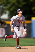 Altoona Curve shortstop Kevin Newman (19) during a game against the Erie SeaWolves on July 10, 2016 at Jerry Uht Park in Erie, Pennsylvania.  Altoona defeated Erie 7-3.  (Mike Janes/Four Seam Images)