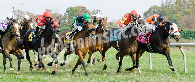 R Vicarious Girl winning at Delaware Park on 10/17/12