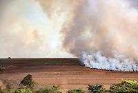 ARARAQUARA, SP, 26.07.2018 - INCENDIO-SP - Queimada de grande proporção é visto entre os Km 259-260 em Araraquara no interior do Estado nesta quinta-feira, 26. (Foto: Bruna Grassi/Brazil Photo Press)