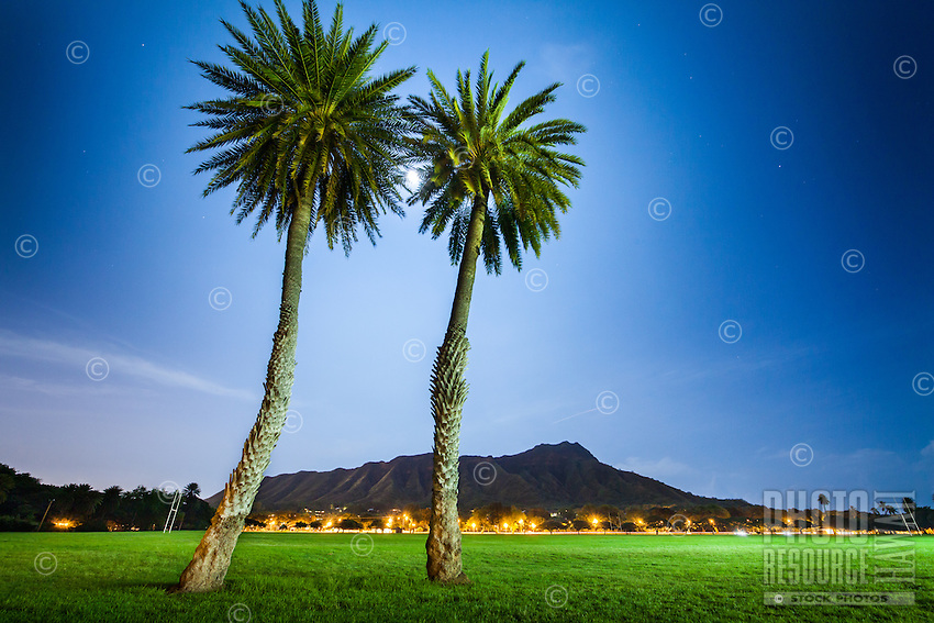 Two palm trees lit from behind by moonlight at Kapi'olani Park, with Diamond Head in the distance, Honolulu, O'ahu.