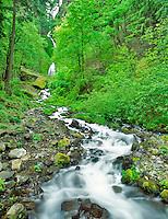 Wahkeena Falls, Oregon