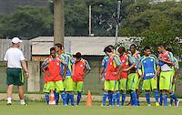 SÃO PAULO, SP, 31 DE JANEIRO DE 2012 - TREINO PALMEIRAS -  Jogadores durante treino do Palmeiras no CT do clube, na Barra Funda, zona oeste de Sao Paulo, na tarde desta terça-feira 31. FOTO: ALEXANDRE MOREIRA - NEWS FREE.