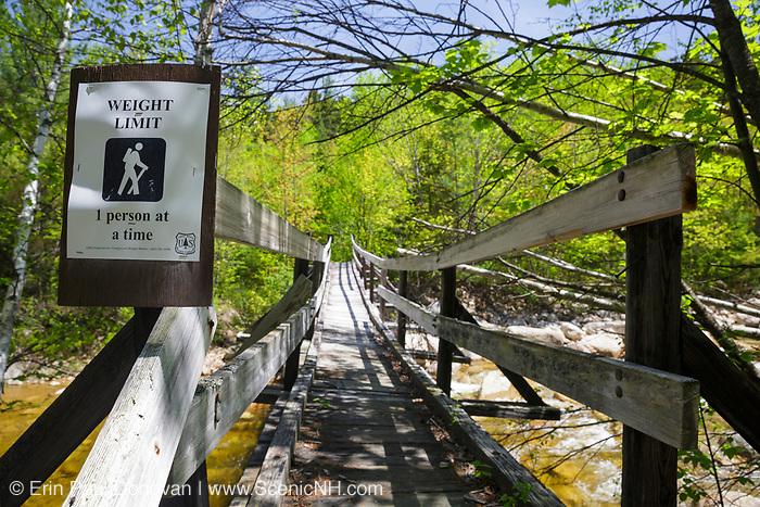 Thoreau Falls Trail bridge in the Pemigewasset Wilderness of Lincoln, New Hampshire. This wooden bridge, at North Fork junction, crosses the East Branch of the Pemigewasset River. It was damaged during Tropical Storm Irene in 2011, and there is now a one-person weight limit.